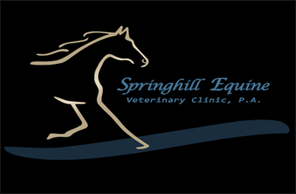 Springhill Equine